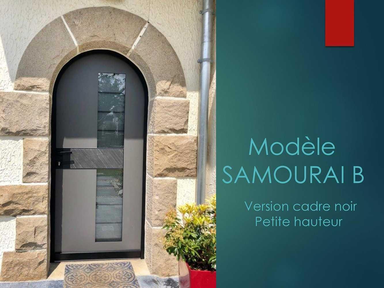 Porte d''entrée - Modèle Samouraï B 0